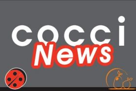 THE COCCINEWS